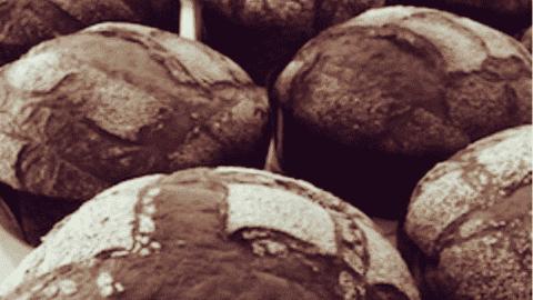 immagine della focaccia veneziana su biancolievito